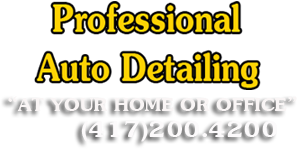 Professional auto detailing 'at your home or office'